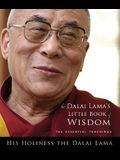 Dalai Lama's Little Book of Wisdom