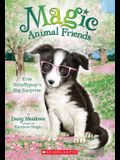 Evie Scruffypup's Big Surprise (Magic Animal Friends #10), 1