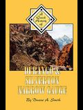 Durango & Silverton Narrow Gauge: A Quick History