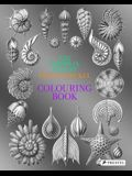 Art Forms in Nature: A Colouring Book of Ernst Haeckel's Prints