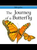 The Journey of a Butterfly (Lifecycles)