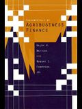Fundamentals of Agribusiness Finance: A Comprehensive Review