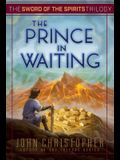 The Prince in Waiting, 1