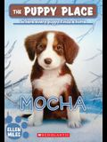 The Puppy Place #29: Mocha