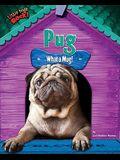Pug: What a Mug!