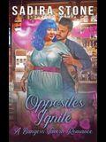 Opposites Ignite: Bangers Tavern Romance 2