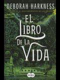 El Libro de la Vida / The Book of Life (All Souls)
