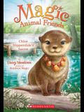 Chloe Slipperslide's Secret (Magic Animal Friends #11), Volume 11
