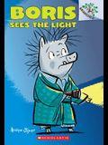 Boris Sees the Light: A Branches Book (Boris #4), 4