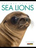 Amazing Animals: Sea Lions