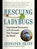 Rescuing Ladybugs: Inspirational Encounters with Animals That Changed the World