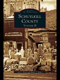 Schuykill County, Volume II