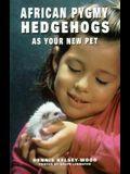 African Pygmy Hedgehog New Pet