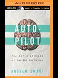 Autopilot: The Art and Science of Doing Nothing