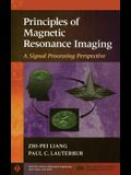 Principles of Magnetic Resonance Imaging: A Signal Processing Perspective