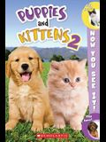 Now You See It! Puppies & Kittens 2