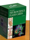 Netter's Neuroscience Flash Cards, 2e (Netter Basic Science)