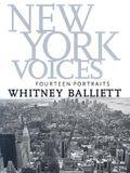 New York Voices: Fourteen Portraits