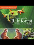 Animals of the Rainforest - Wildlife of the Jungle - Encyclopedias for Children