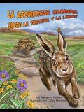 La Asombrosa Carrera Entre La Tortuga Y La Liebre (Tortoise and Hare's Amazing Race)