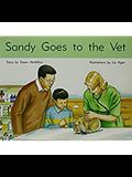 Sandy Goes to the Vet: Individual Student Edition Blue (Levels 9-11)