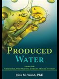 Produced Water Volume 1: Fundamentals, Water Chemistry, Emulsions, Chemical Treatment