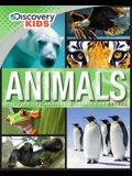 Discovery Kids Animals: Discover the Amazing Diversity of Nature