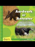 Aardvark or Anteater