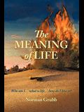 The Meaning of Life: Who Am I...What Is Life...How Do I Live It?