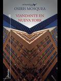 Viandante en Nueva York