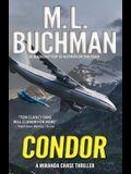 Condor: a political technothriller