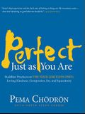 Perfect Just as You Are: Buddhist Practices on the Four Limitless Ones: Loving-Kindness, Compassion, Joy, and Equanimity