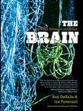 The Brain: Big Bangs, Behaviors, and Beliefs