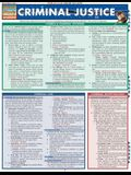 Criminal Justice: Quickstudy Laminated Reference Guide