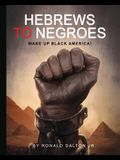 Hebrews to Negroes: Wake Up Black America!