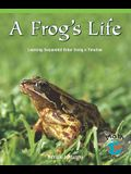 Frogs Life