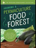 Growing a Permaculture Food Forest: How to Create a Garden Ecosystem You Only Plant Once But Can Harvest for Years