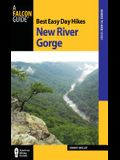 Best Easy Day Hikes New River Gorge