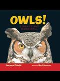 Owls!: Strange and Wonderful