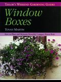 Taylor's Weekend Gardening Guide to Window Boxes: How to Plant and Maintain Beautiful Compact Flowerbeds