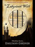 The Labyrinth Wall: Map Edition