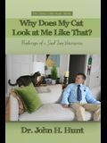 Why Does My Cat Look at Me Like That?: Ponderings of a Small Town Veterinarian
