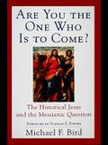 Are You the One Who Is to Come?
