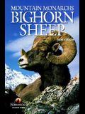 Bighorn Sheep: Mountain Monarchs