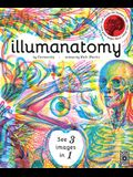 Illumanatomy: See Inside the Human Body with Your Magic Viewing Lens