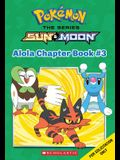 Adventure on Treasure Island (Pokémon Alola Chapter Book #3)