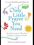 Only Little Prayer You Need: The Shortest Route to a Life of Joy, Abundance, and Peace of Mind