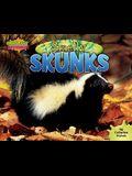 Smelly Skunks