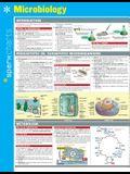 Microbiology Sparkcharts, 42
