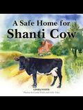 A Safe Home for Shanti Cow